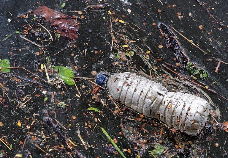 E se il politene fosse biodegradabile?